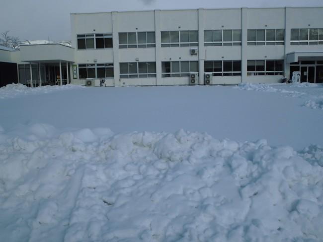 青々としていた前庭もあっという間に雪原に。