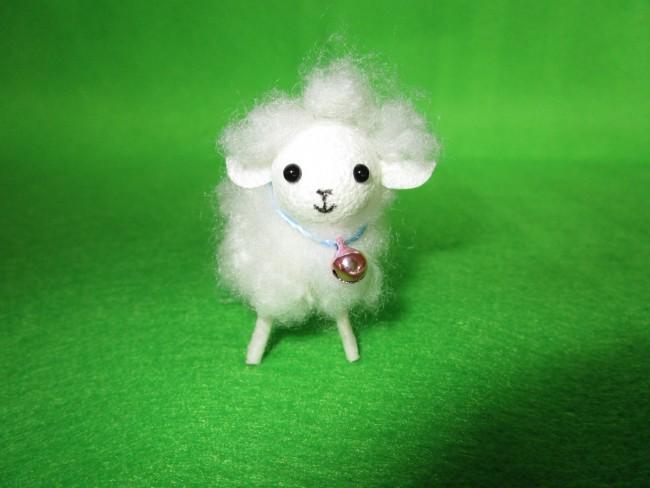 羊(正面)